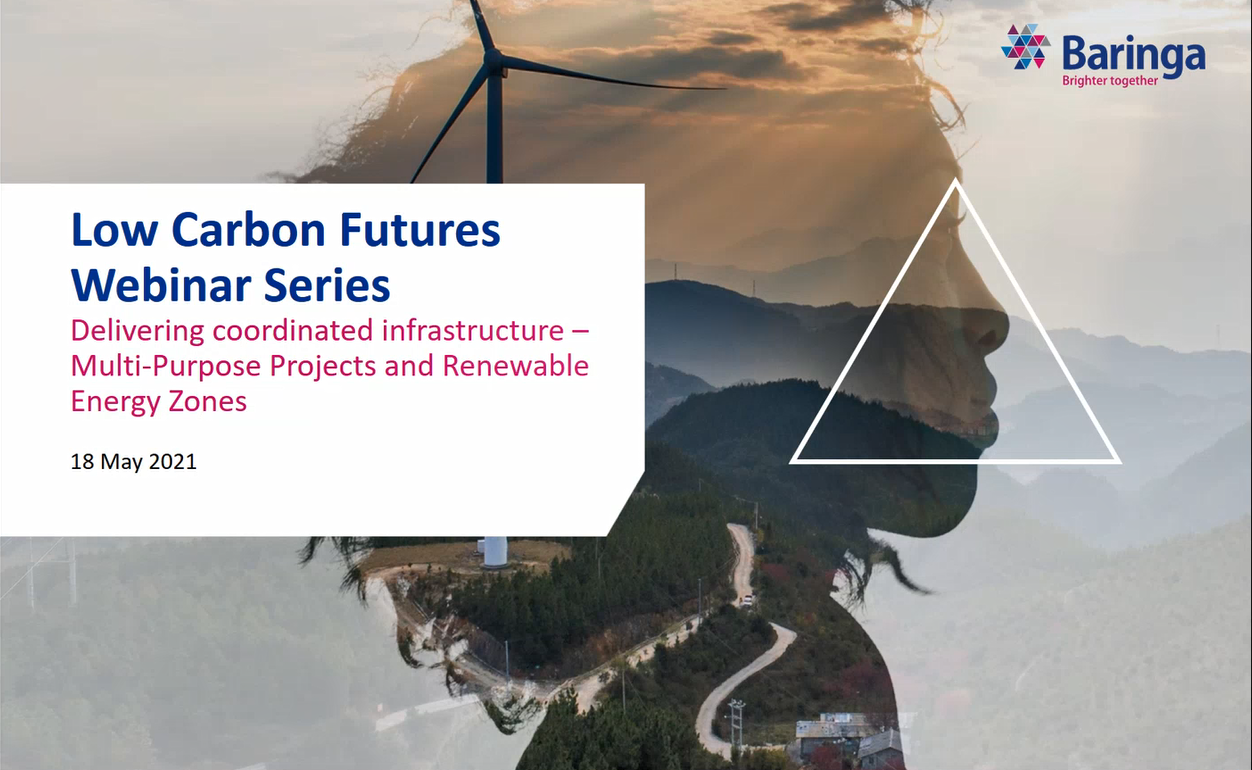 Low Carbon Futures Webinar Series: Multi Purpose Projects and Renewable Energy Zones