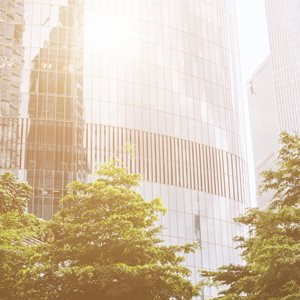 What does Net Zero mean to Financial Services?